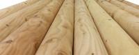 Rundstangen Lärchenvollholz 120 mm Durchmesser, geschält, gekappt